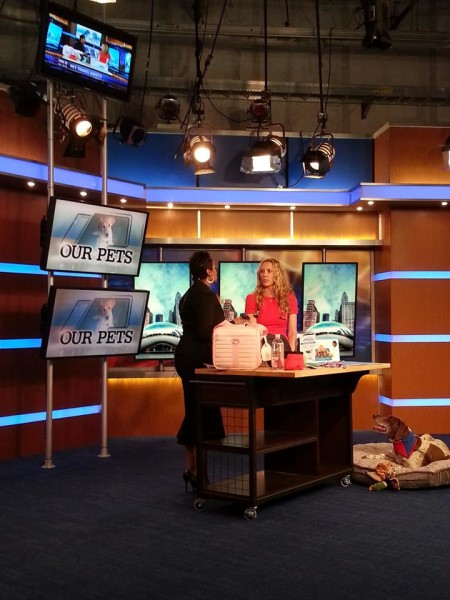 Dr. Derse explaining some travel tips with Darlene Hill, FOX anchor.