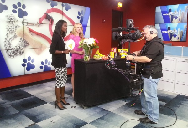 Dr. Derse discussing if roses or lilies are toxic on WGN-TV.